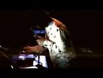 Leafcutter John (UK) - Live at MS Stubnitz // 2013-03-30 - Video Select