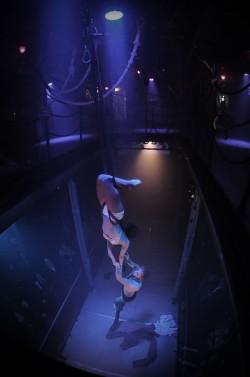 Midnight Circus: photo by phalque
