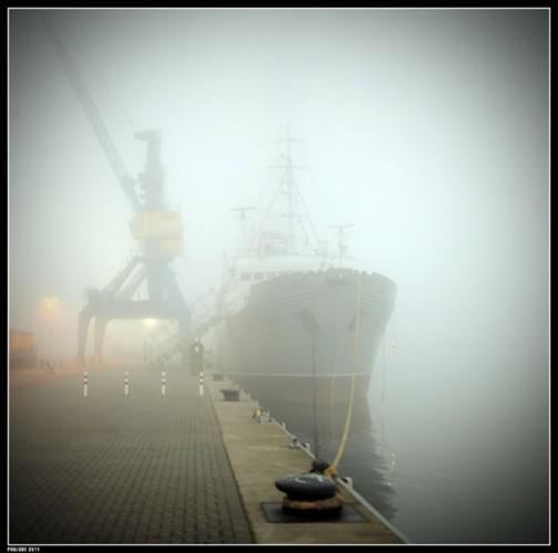 Stubnitz im Nebel